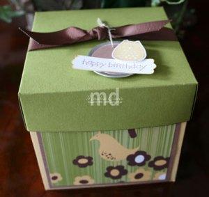 cupacke-box2