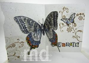swallowtail-inside