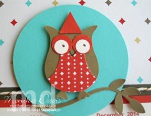 owl-4th