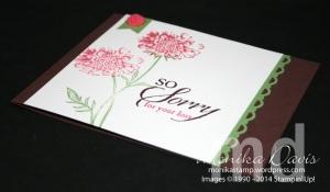 field-flowers-sorry3