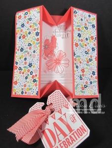 mg-card-4-box