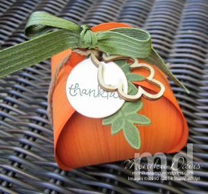curvy-thanks-pumpkin