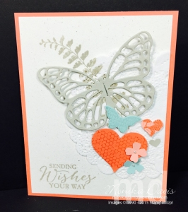 butterfly-basics-godiva-swa