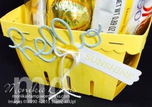 hello-sunshine-basket2