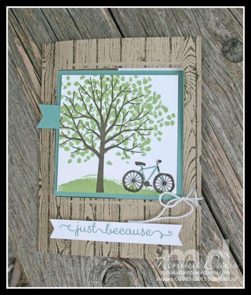 sheltering-tree3-e