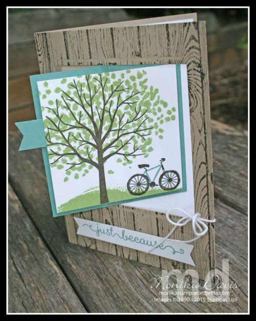 sheltering-tree4-e